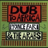 Couverture de l'album Dub to Africa