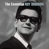 Couverture de l'album The Essential Roy Orbison