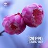 Couverture de l'album Loving You - EP