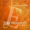 Couverture de l'album Yeni Gelen Güne Türkü