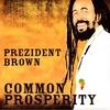 Couverture de l'album Common Prosperity