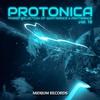 Couverture de l'album Protonica, Vol. 13