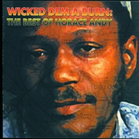 Cover of the track Wicked Dem a Burn