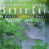 Couverture de l'album Sound Chi: Music for Feng Shui