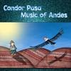 Couverture de l'album Condor Pasa - Music of Andes