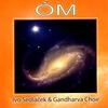 Couverture de l'album Óm