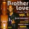 Couverture du titre Blue Highway