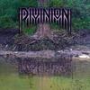 Couverture de l'album Divinion