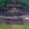 Cover of the album Divinion