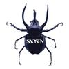 Cover of the album Saosin