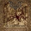 Couverture de l'album Tor in eine neue Welt