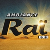Cover of the album Ambiance raï 2013