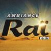 Couverture de l'album Ambiance raï 2013