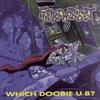 Couverture de l'album Which Doobie U B?