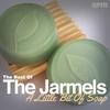 Couverture de l'album A Little Bit of Soap - The Best of the Jarmels
