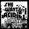 Cover of the album She Wants Acid - Single