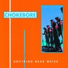 Couverture de l'album Anything Near Water