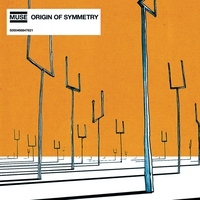 Cover of the track Origin of Symmetry