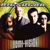 Couverture de l'album Hemi-Vision