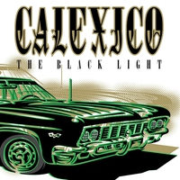 Cover of the track The Black Light
