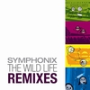 Cover of the album The Wild Life Remixes