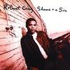 Couverture de l'album Shame + A Sin