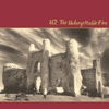 Couverture de l'album The Unforgettable Fire