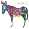 Couverture de l'album Primark (All towns look the same)