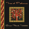 Couverture de l'album Tree of Patience