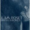 Cover of the album Bricks & Bones