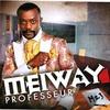 Couverture de l'album Professeur (M 23)