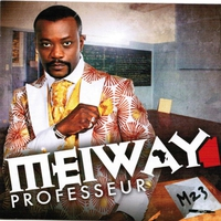 Cover of the track Professeur (M 23)