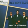 Cover of the album Hitcollection Vol. 1- You're A Woman