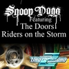 Cover of the album Riders On the Storm (Fredwreck Remix) - Single