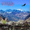 Cover of the album Chile Psytrance, Vol. 2 (Compiled by Ovnimoon)