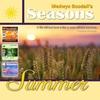 Couverture de l'album Medwyn Goodalls SUMMER