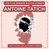 Cover of the album Les plus belles guitares Corses (Les plus grands succès Corses)