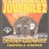 Couverture de l'album Deadly Groundz (Screwed)