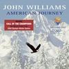 Couverture de l'album American Journey