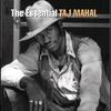 Couverture de l'album The Essential Taj Mahal