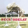 Couverture de l'album Odelay