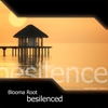 Cover of the album Besilenced - EP