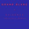 Couverture de l'album Evidence (Molecule Remix) - Single