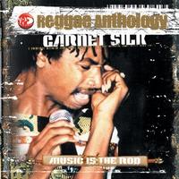 Couverture du titre Reggae Anthology: Music Is the Rod
