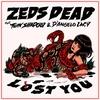 Couverture de l'album Lost You (feat. Twin Shadow & D'Angelo Lacy) - Single