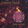 Cover of the album Trance-Fixed