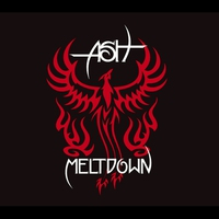 Cover of the track Meltdown