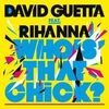 Cover of the track Who's That Chick