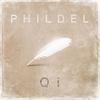 Couverture de l'album Qi