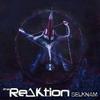 Couverture de l'album Selknam